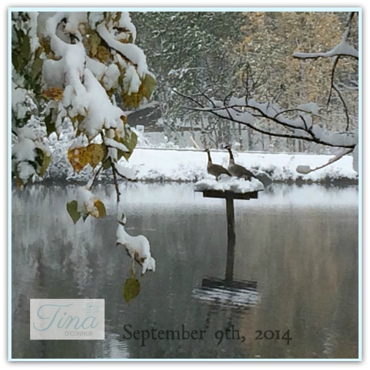 sept 9 2014 snow couple